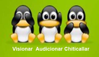 audicionar, visionar, chiticallar